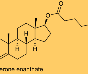 Testosterone Enanthate Raw Data GC-MS/MS [PDF]